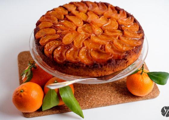 narobe_obrnjena_mandarinina_torta-4