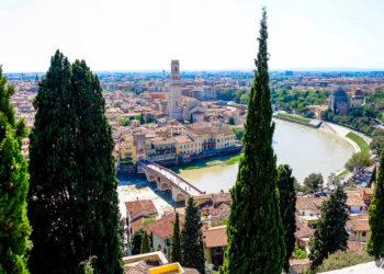Hrib pri Castel San Pietro